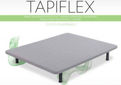 TAPIFLEX-(2)-001